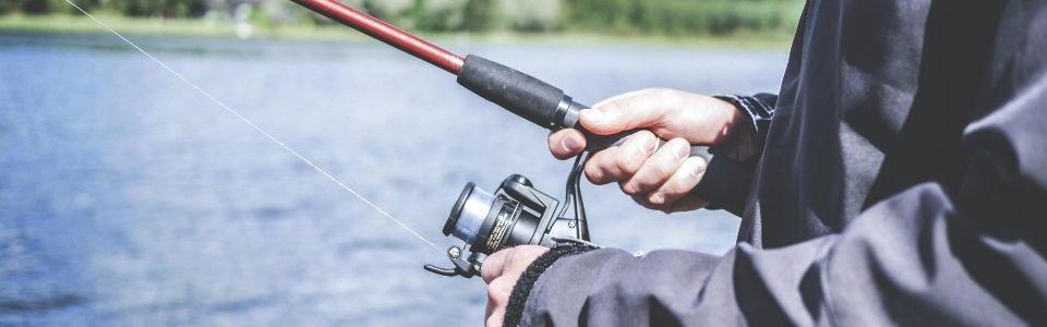Fiska i Gävleborg